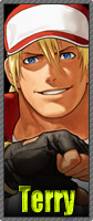 The King of Fighters XII B_terry
