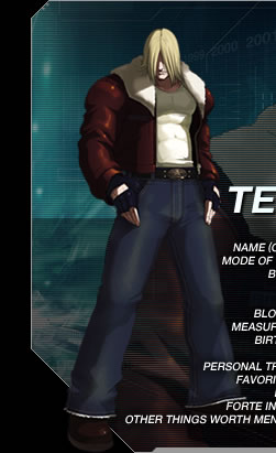 Image result for kof 2003 terry